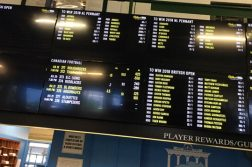 Monmouth-Park-board