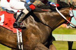 NJ-horse-racing-subsidy