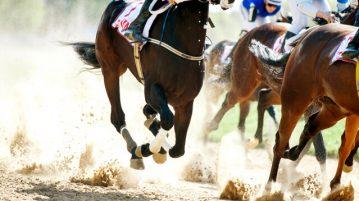 NJ-horsemen-aggressor-vs-sports-leagues
