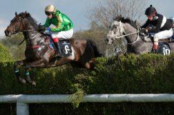 steeplechase-nj-betting