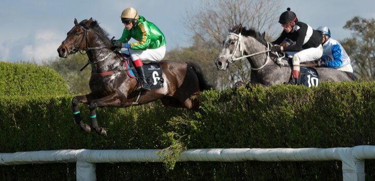 Far hills steeplechase betting open source betting software sports