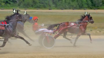 harness racing freehold raceway sports betting