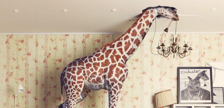 giraffe head in ceiling