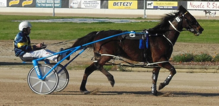 standardbred horse racing