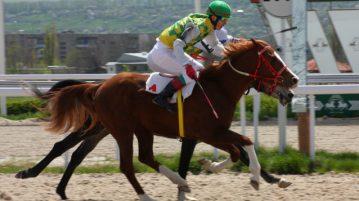 race horses crossing finish line
