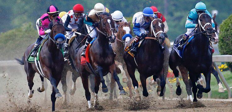 Sport betting horse racing ref nba betting