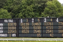 horse betting board