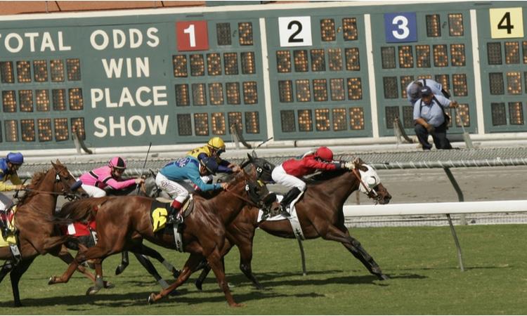 racetrack odds board